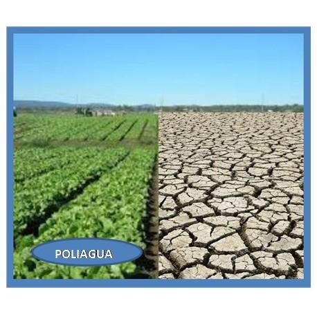 Polímero Retenedor de Agua Poliagua
