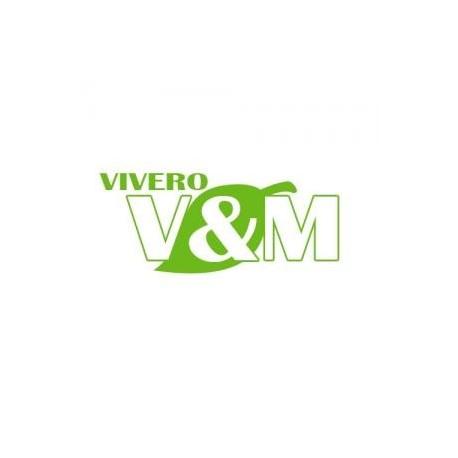 VENTAS DE PLANTAS FRUTALES Y ORNAMENTAL