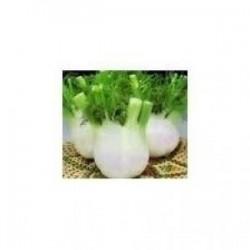 4 gramos semillas hinojo wadenromen...