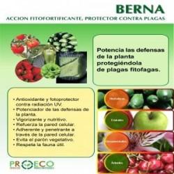 Berna mezcla de extractos de plantas con acción fitofortif...
