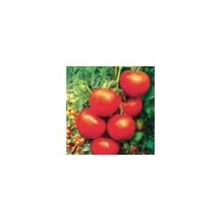 Semillas tomate rio blanco...