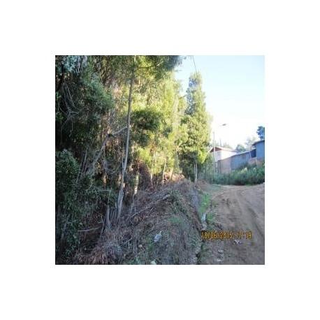 Sitio en Pichilemu