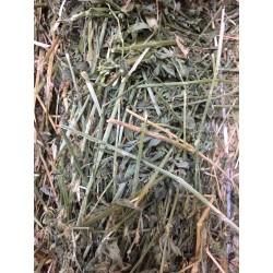 Fardos de alfalfa...