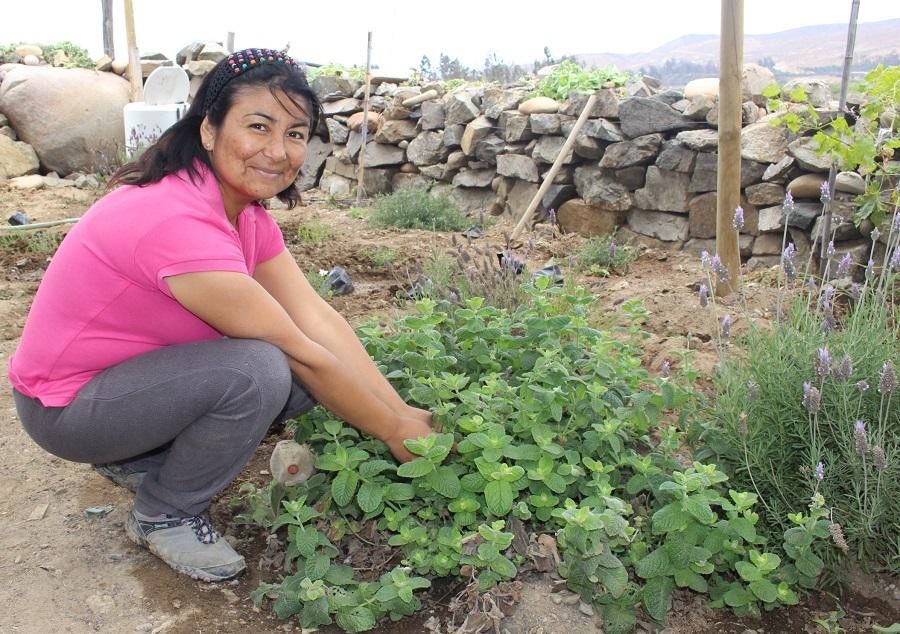 Convenio INDAP-Prodemu fortalece el trabajo de mujeres rurales en la Provincia de Copiapó