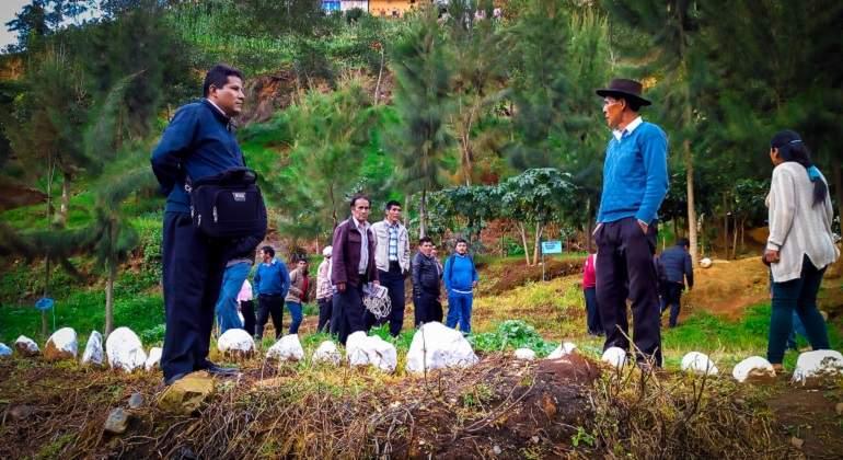 Perú: Productores de papa blanca de Huánuco fueron capacitados en asociatividad