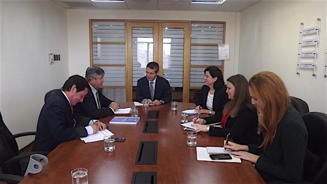 DIRECON Y ASOEX analizan acciones para mejorar el TLC con Corea, las promociones internacionales y la defensa internacional del kiwi chileno
