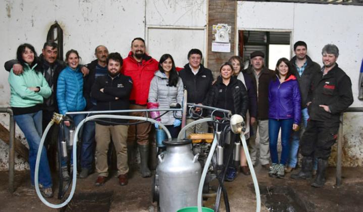 """Pequeños ganaderos buscan revivir el """"boom lechero"""" de Magallanes"""