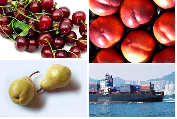 """Fedefruta espera """"buena temporada frutícola"""" gracias a que dólar se mantiene estable"""