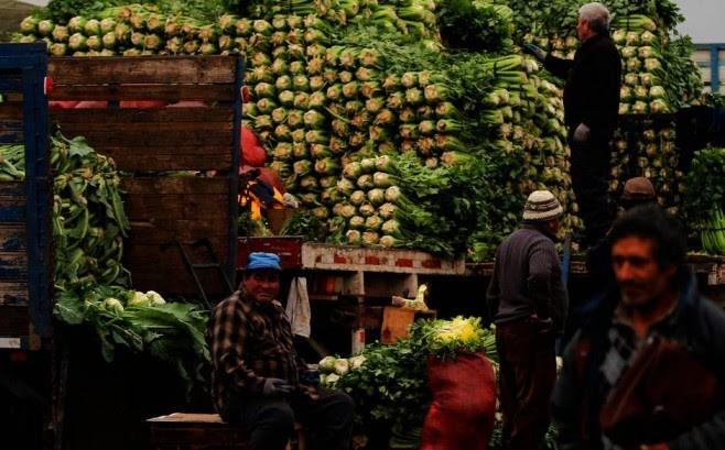 China consigue mejores precios para la palta gracias a un mayor comercio con Latinoamérica