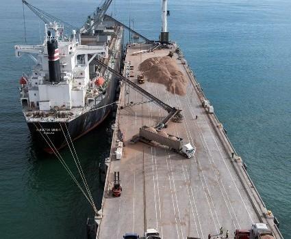 Pymes forestales recorrieron terminales del Biobío para conocer proceso de exportación