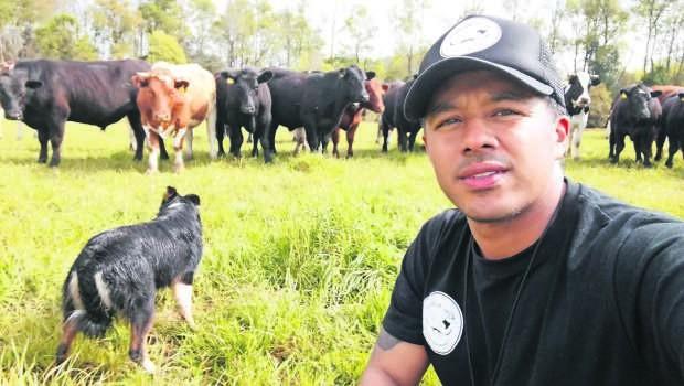 Pastoreo dirigido: el aporte de los perros pastores a la ganadería