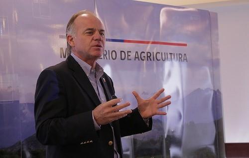 India cierra la puerta a bajar aranceles a las nueces chilenas en medio de guerra comercial