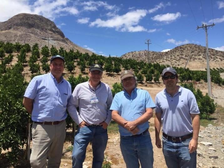 Se van consolidando las mandarinas: Jorge Valenzuela visitó huertos de cítricos en Valle del Elqui