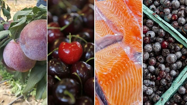 Exportaciones chilenas no cobre baten récords en 2018: Brillaron cerezas, salmones, arándanos y ciruelas