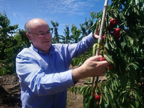 Exportaciones frutícolas suben en un 10,8% en 2018
