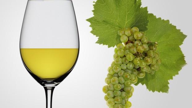 La propuesta que busca rebajar la graduación alcohólica al vino en el sur