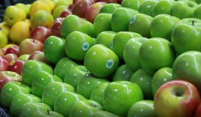Análisis PMA: 4 esferas de la agricultura donde la Inteligencia Artificial ya está marcando diferencias